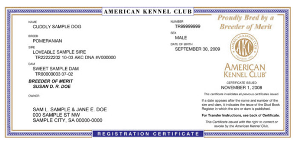 Registration certificates featuring a special designation