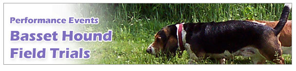 Basset Hound Field Trials