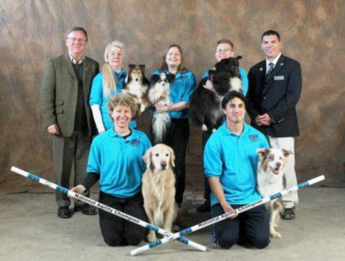 AKC National Agility Preferred