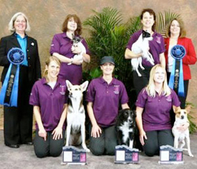 AKC Invitational Winners