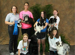 Junior Agility High Combined Winners