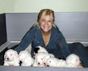 Jere Marder with Old English Sheepdog pups