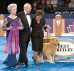 AKC Eukanuba National Championship