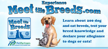 Experience Meet the Breeds!