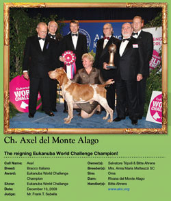 AKC Weekly Wins Gallery