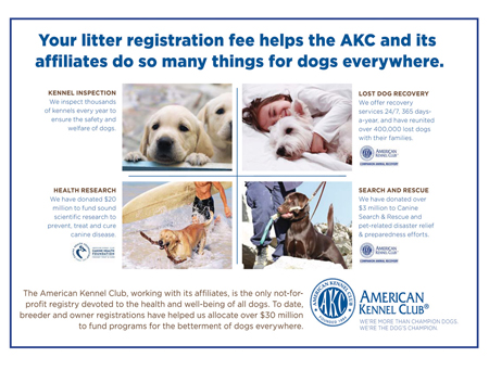 AKC Litter Fee Registration benefits