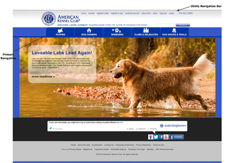 New AKC website