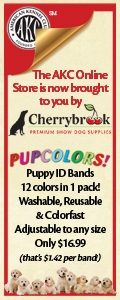 Cherrybrook Puppy ID Bands - 12 colors in 1 pack! Only $16.99