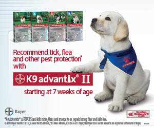 Recommend tick, flea and other pest protection with K9 Advantix II starting at 7 weeks of age.