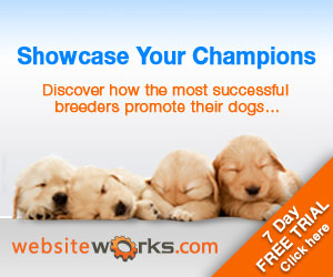 Showcase Your Champions: Discover how the most successful breeders promote their dogs...7 day free trial. Click here! websiteworks.com