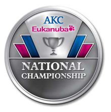 AENC Logo