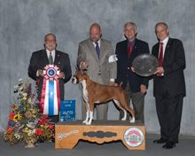 San Antonio Kennel Club