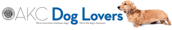 AKC Dog Lovers Blog
