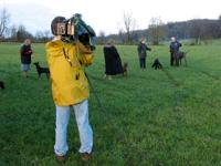 camera filming dog show