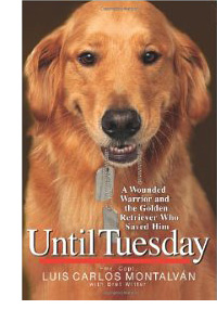 Until Tuesday book