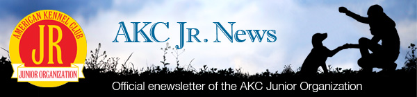 AKC Junior News