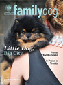 Family Dog Magazine