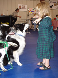Oshkosh Kennel Club