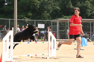 Agility Demonstration