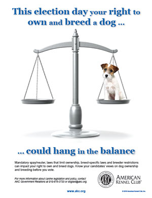 This election day, your right to own and breed a dog could hang in the balance.