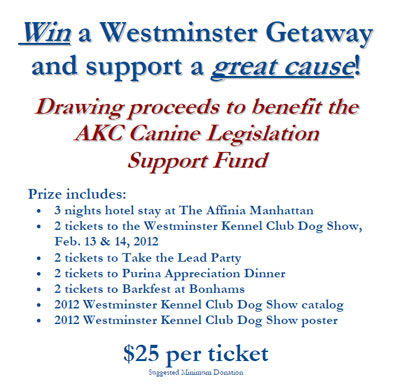 Win a Westminster Getaway and support a great cause!