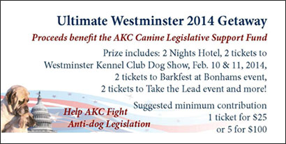 Ultimate Westminster 2014 Getaway