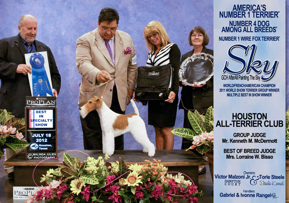 Kettle Moraine Kc All Breed Dog Show