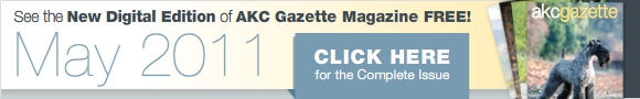 Gazette Digital Edition