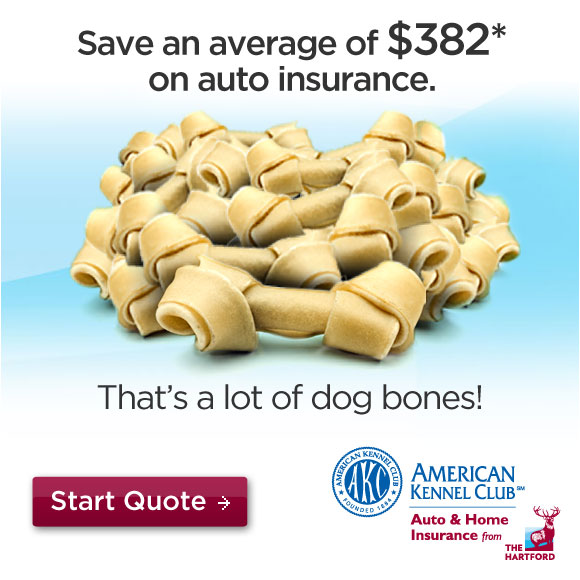 The Hartford. Save an average $382 on car insurance. Start quote.