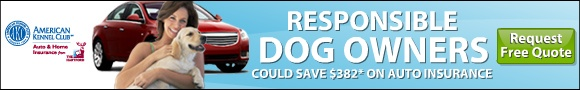 Responsible dog owners could save $382* on car insurance. Request a free quote.