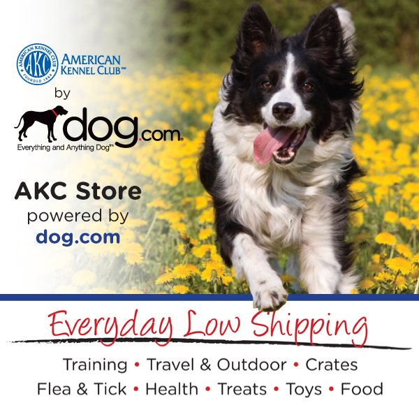 20% Off at dog.com