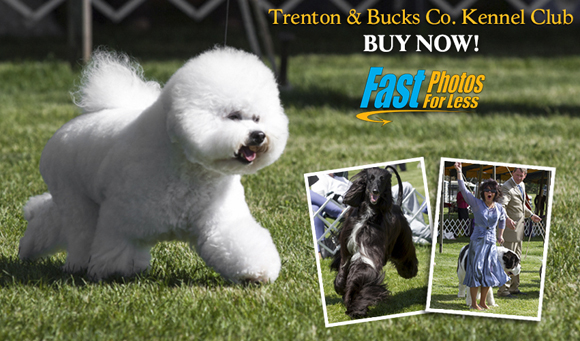Trenton and Bucks Co. Kennel Club - Buy Now! Fast Photos for Less