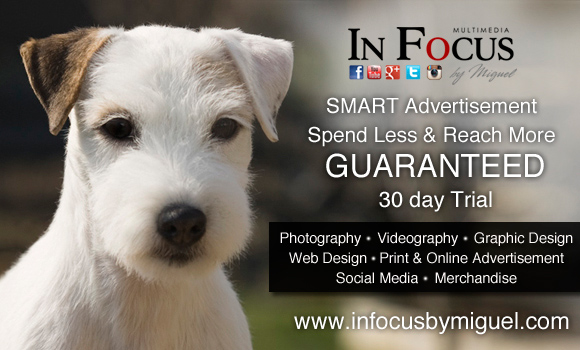 In Focus by Miguel - 30 Day Trial