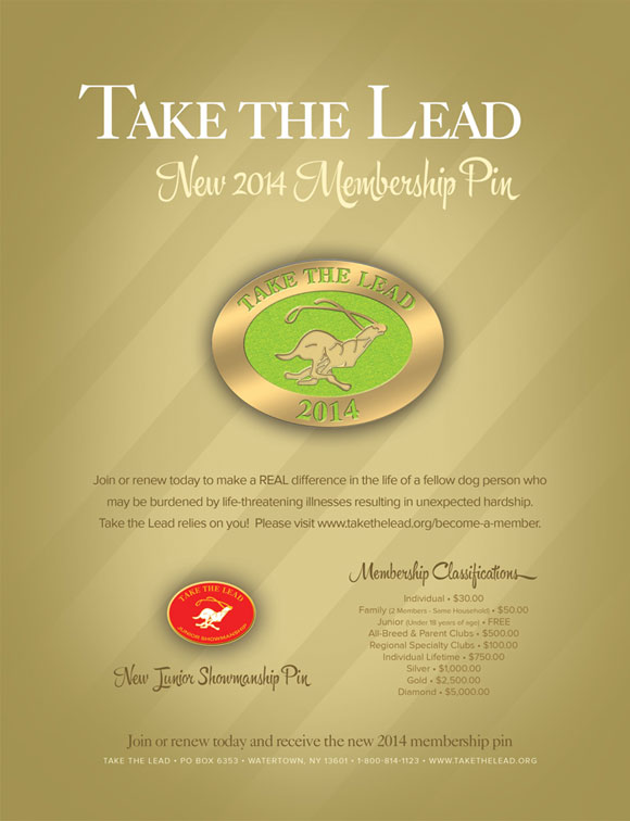 Take the Lead New 2014 Membership Pin