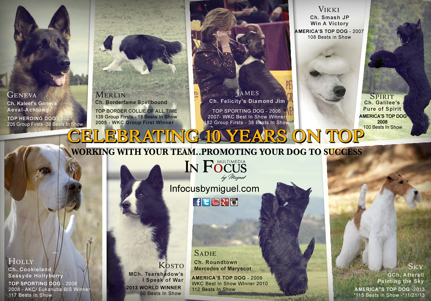 In Focus by Miguel: Celebrating 10 Years on Top. Working with Your Team...Promoting Your Dog to Success