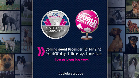 Coming soon! December 13, 14, and 15th. Over 4,000 dogs, in three days. In one place. Live.eukanuba.com