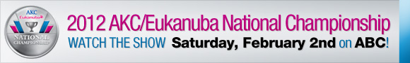 Watch the AKC Eukanuba National Championship on Saturday, Feb 2 on ABC