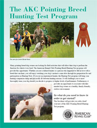The AKC Pointing Breed Hunting Test Program