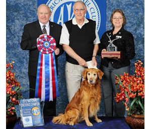 photo coverage from the 2012 akc national obedience invitational
