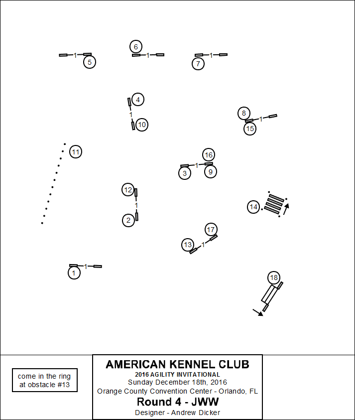 Akc Agility Invitational Past Events American Kennel Club