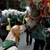 View the Columbus Day Parade Slideshow