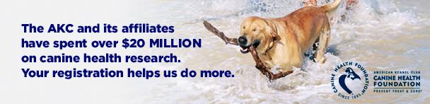 Online Dog Registration