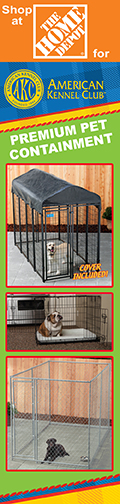 AKC Outdoor Kennels and Runs