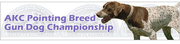AKC Pointing Breed Gun Dog Championship