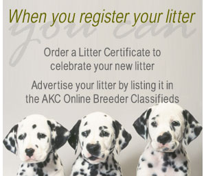 AKC Litter Registration